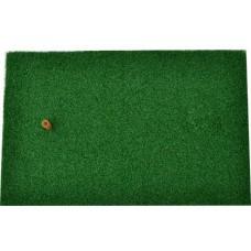 หญ้าเทียม  ซ้อมไดร์ฟ